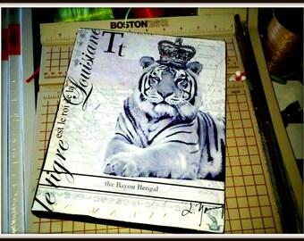Louisiana Tiger on Canvas 8x10