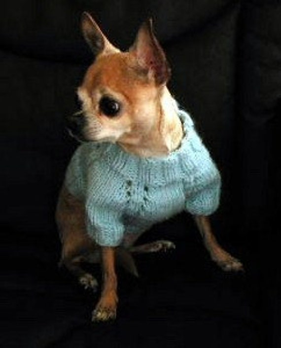Short Sleeve Raglan Style Dog Sweater Pattern for Knitting