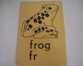 Vtg FROG Flash Card