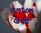 Custom Order for SweetLilMonkey