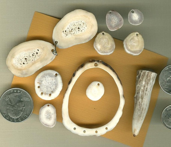 Antler Slices and Tip Craft Supply Nice 11 piece Destash lot S53