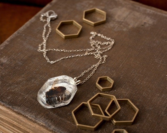 Real Bee Hexagon Necklace, Silver Colony Collapse Jewelry