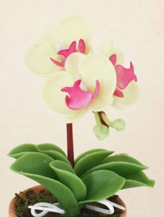 Dollhouse Miniature Clay Phalaenopsis Orchid Flower Flora Tree Plant Ceramic Pot