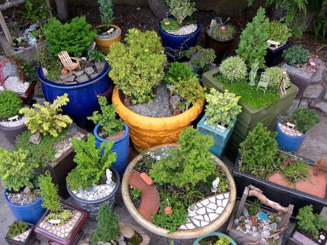 Start your own miniature garden business includes by janit - How to start a mini garden ...