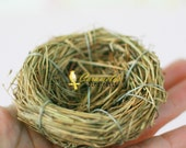 Set of 3 Natural Bird Nests 2 1/4 inch