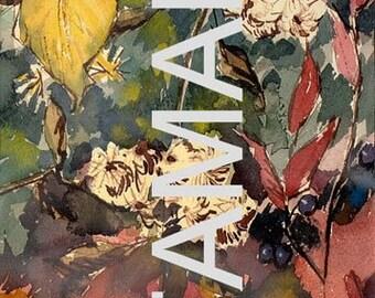 Jack Rau botanical watercolor 5x7 archival print blank card