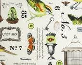 Botanika by Paula Prass, Wing Study in meadow, 1 yard