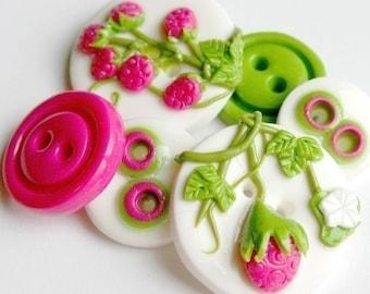 Raspberry Fields (handmade buttons set of 6)