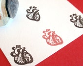 Anatomical Heart  Rubber Stamp - Handmade rubber stamp by BlossomStamps