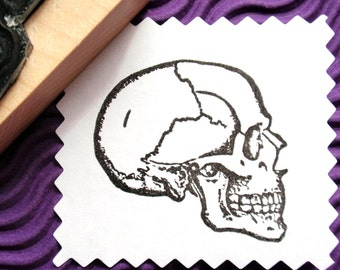 SALE Anatomical Skull Profile Rubber Stamp  - Handmade by Blossom Stamps