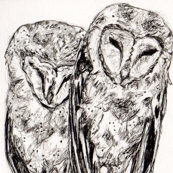 Black and White Owl Drawing - Soul Mates in the Barn Rafters - Original Ink Drawing - Art