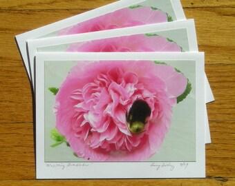Nestling Bumblebee, Photo Art Card