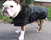 Classic Wool Coat for a Bulldog - to be custom-sized, custom-made