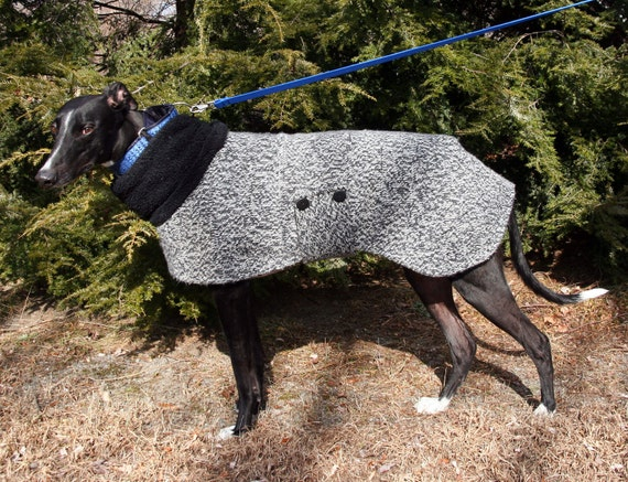 Tweed Sweater Coat for Greyhounds - to be custom made