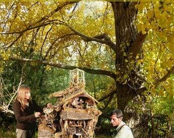 Fairy House  DVD, The Enchanted Treehouse