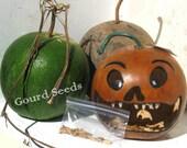 SEEDS GOURD Cannon Ball Basket Pumpkin 25 Grow Your Own