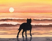 PIT BULL SUNSET Dog Watercolor Art Print Signed by Artist D J Rogers