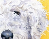 LABRADOODLE Dog Signed Art Print by Artist DJ Rogers