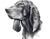 Black And Tan Coonhound Dog Art Print Signed by Artist DJ Rogers