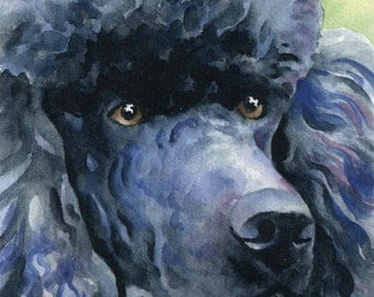 BLACK POODLE Art Print Watercolor Signed by Artist DJ Rogers