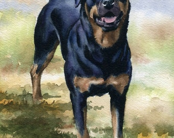 ROTTWEILER Art Print Watercolor Signed by Artist D J Rogers