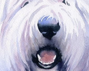 OLD ENGLISH SHEEPDOG Art Print Signed by Artist D J Rogers