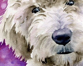 Goldendoodle Art Print Signed by Artist DJ Rogers