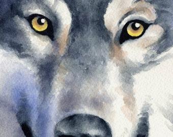 WOLF Wildlife Art Print Signed by Artist DJ Rogers