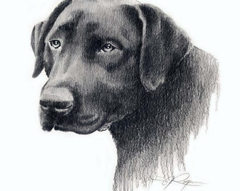 BLACK LAB Drawing Labrador Dog Art Print Signed by Artist DJ Rogers