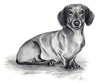 DACHSHUND Dog Art Print Signed by Artist DJ Rogers
