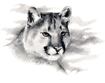 COUGAR Wildlife MOUNTAIN LION Art Print Signed by Artist D J Rogers