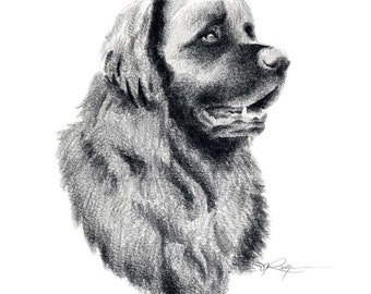 LEONBERGER Dog Pencil Drawing ART Print Signed by Artist DJ Rogers