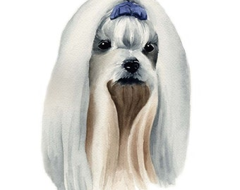MALTESE Dog Watercolor Painting ART Print Signed by Artist DJ Rogers