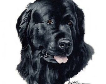 NEWFOUNDLAND Dog Watercolor Painting ART Print Signed by Artist DJ Rogers