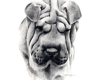 SHAR PEI Dog Pencil Drawing Art Print Signed by Artist DJ Rogers