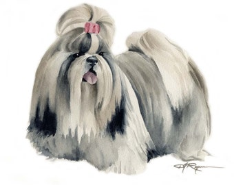 SHIH TZU Dog Watercolor Painting Art Print Signed by Artist DJ Rogers