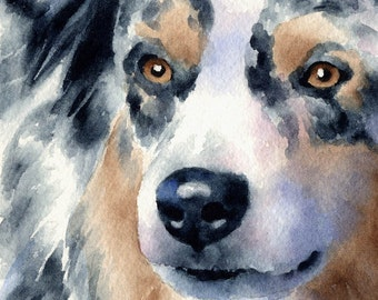 AUSTRALIAN SHEPHERD Original Watercolor Painting by Artist DJ Rogers