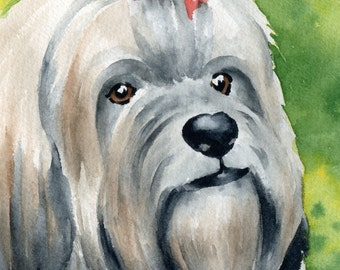 LHASA APSO Art Print Watercolor Signed by Artist DJ Rogers