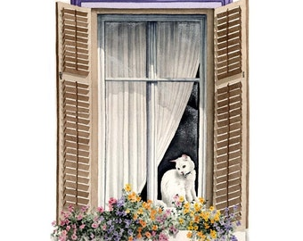 WHITE CAT In The WINDOW Art Print Signed by Artist D J Rogers