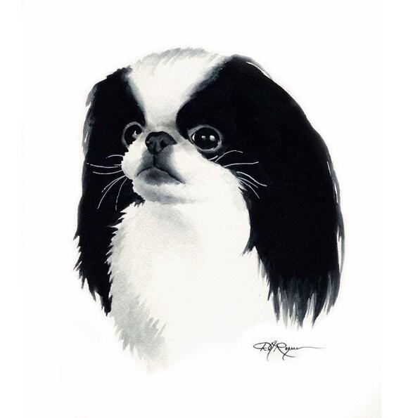 JAPANESE CHIN Dog Art Print Signed by Artist DJ Rogers Japanese Chin Standard