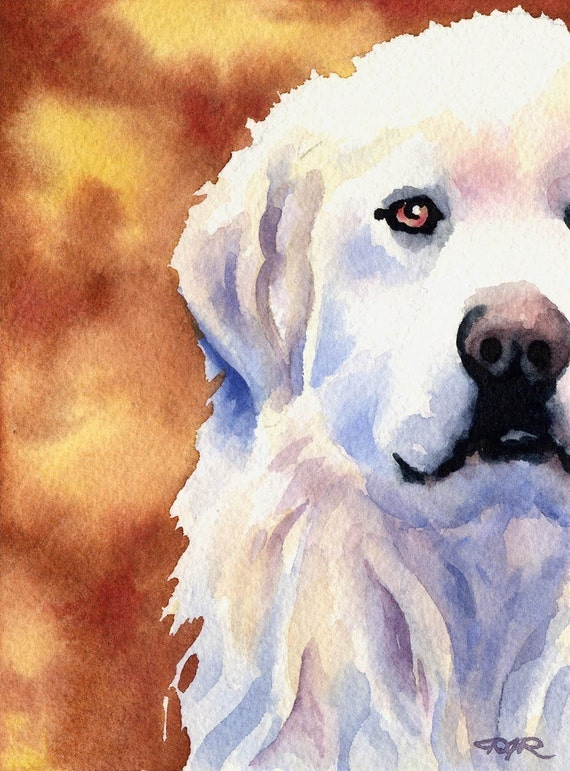 GREAT PYRENEES Art Print Signed by Artist DJ Rogers