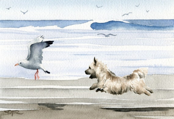 """Cairn Terrier Art Print """"CAIRN TERRIER At The Beach"""" Watercolor Signed by Artist DJ Rogers"""