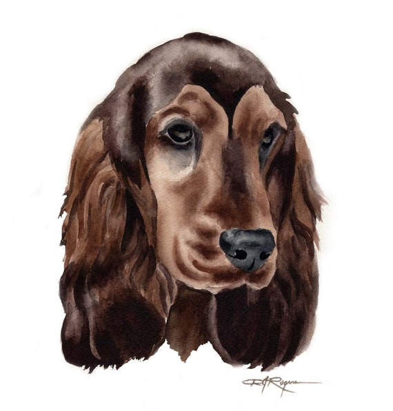 ENGLISH COCKER SPANIEL Dog Art Print Signed by Artist D J Rogers