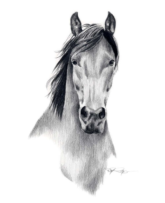 MUSTANG HORSE Pencil Drawing Art Print Signed by Artist DJ