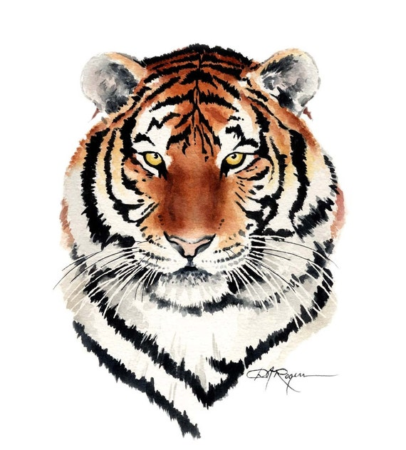 TIGER Watercolor Painting Art Print Signed by Artist DJ Rogers