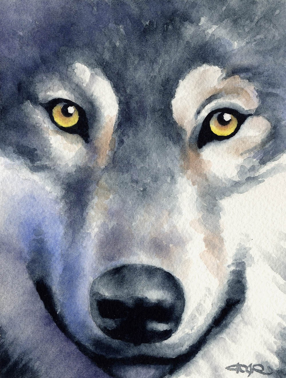 Wolf Wildlife Art Print Signed By Artist Dj Rogers By