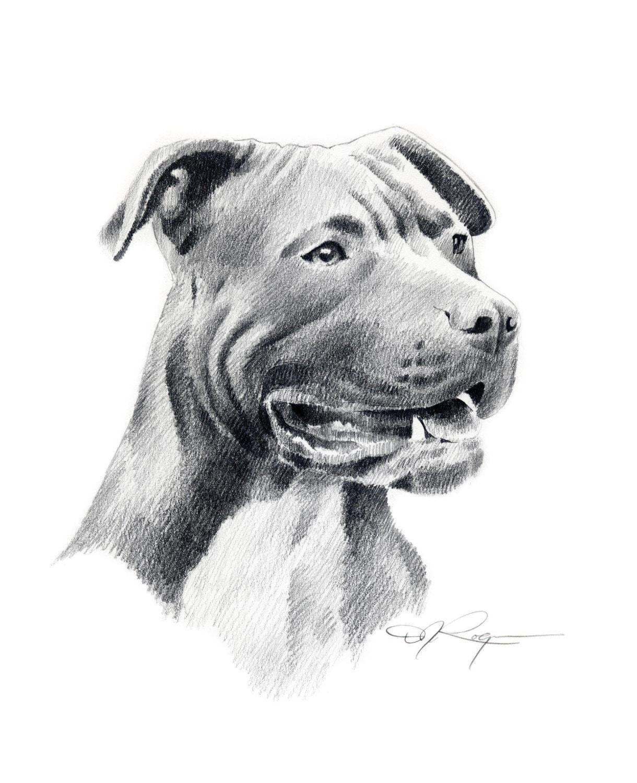 american pit bull terrier dog signed art print  artist dj
