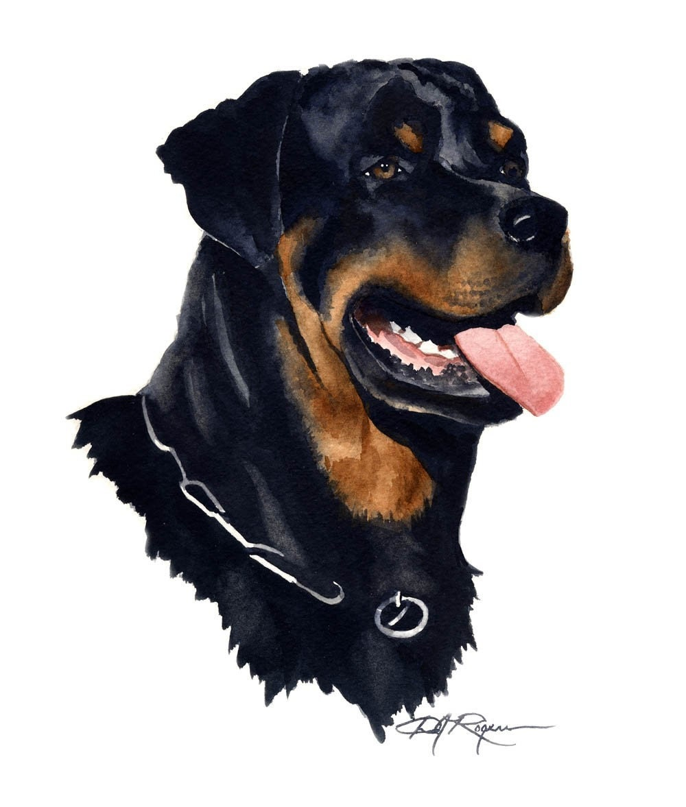 rottweiler dog watercolor painting art print signed by artist