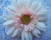 palest pink daisy hair clip