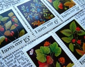 vintage postage - berries - postage stamp ephemera - Russia